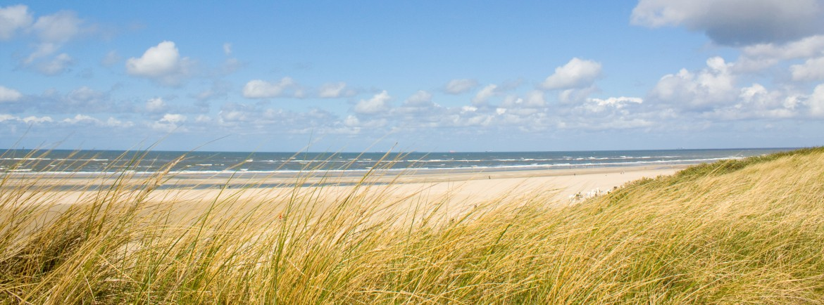 The dunes and the sea are within walking distance!